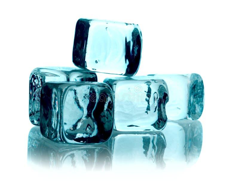 τήξη πάγου κύβων στοκ εικόνα με δικαίωμα ελεύθερης χρήσης
