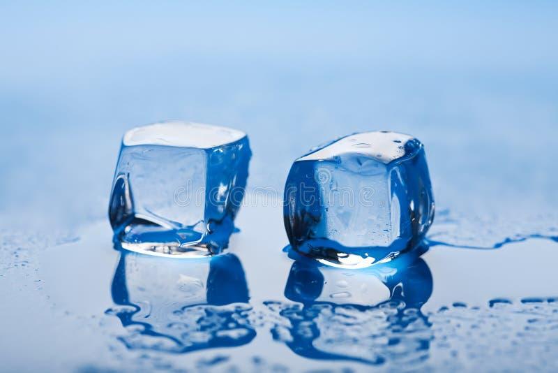 τήξη πάγου κύβων στοκ φωτογραφία
