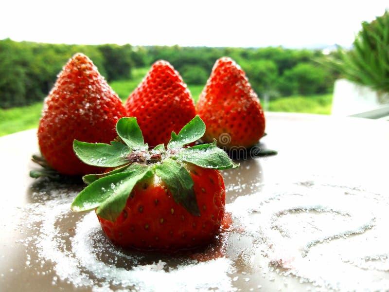 Τήξη Strawbery suger στοκ εικόνες