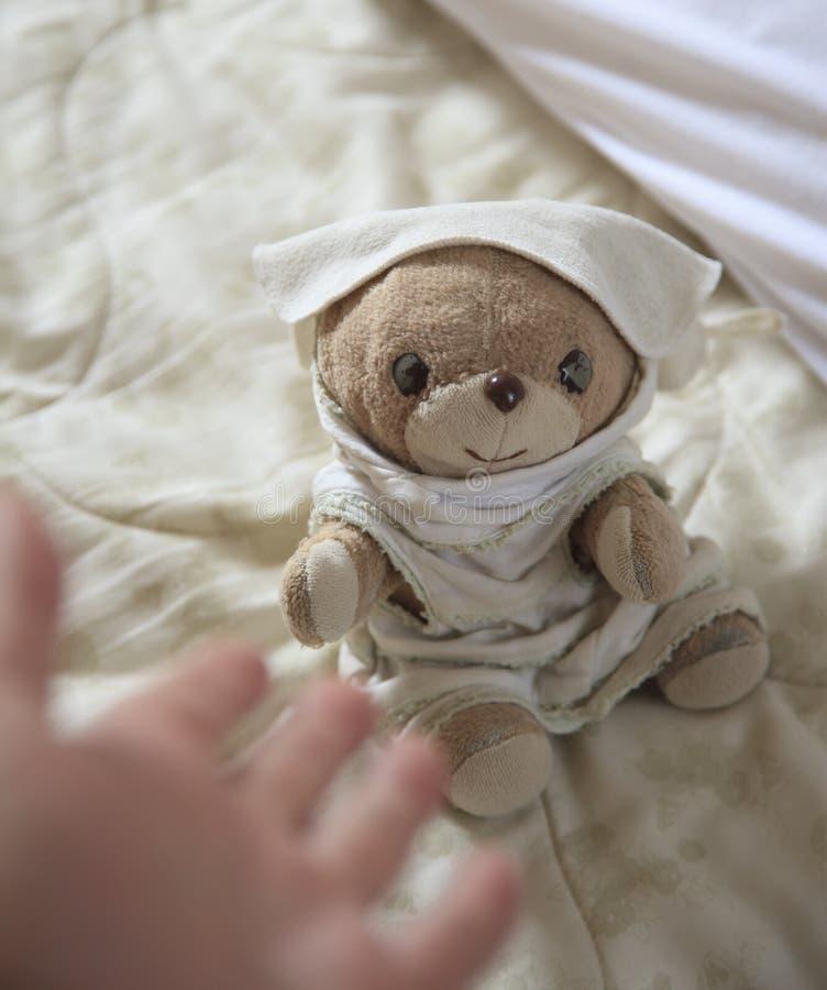 Τίναγμα του χεριού με τη teddy αρκούδα στοκ εικόνα