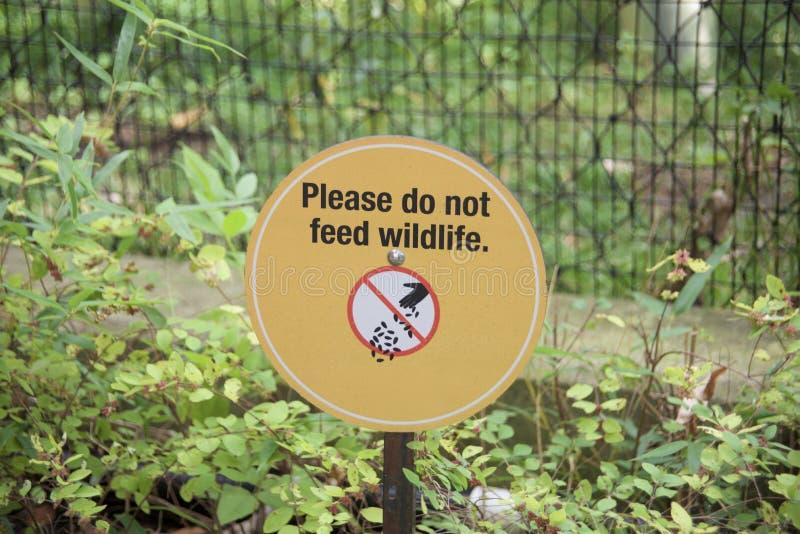 ταΐζοντας απαγορευμένη άγρια φύση στοκ εικόνες με δικαίωμα ελεύθερης χρήσης