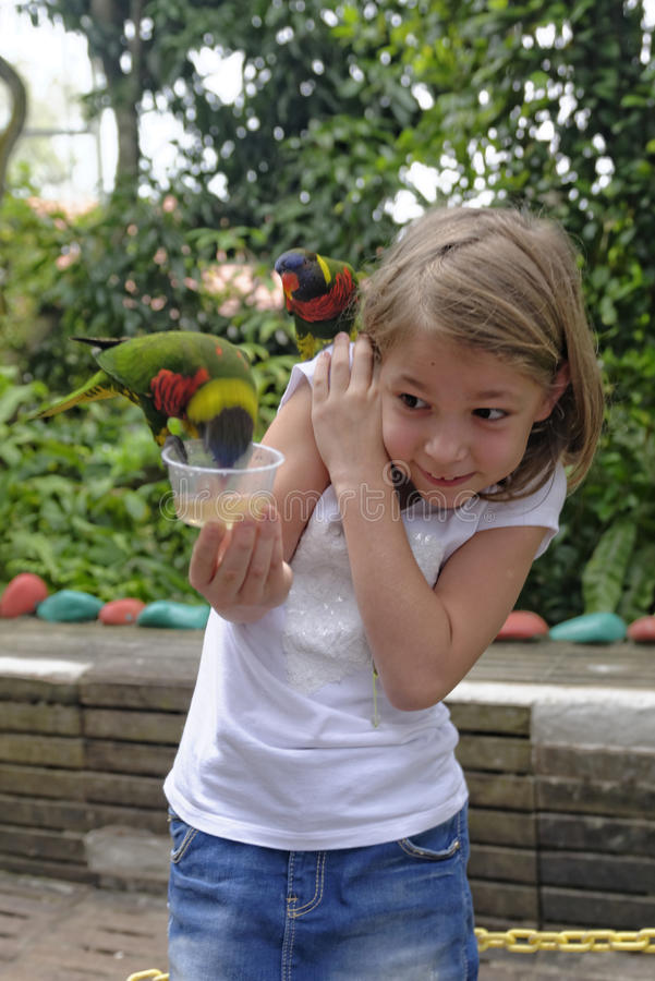 Ταΐζοντας παπαγάλοι κοριτσιών στοκ φωτογραφίες