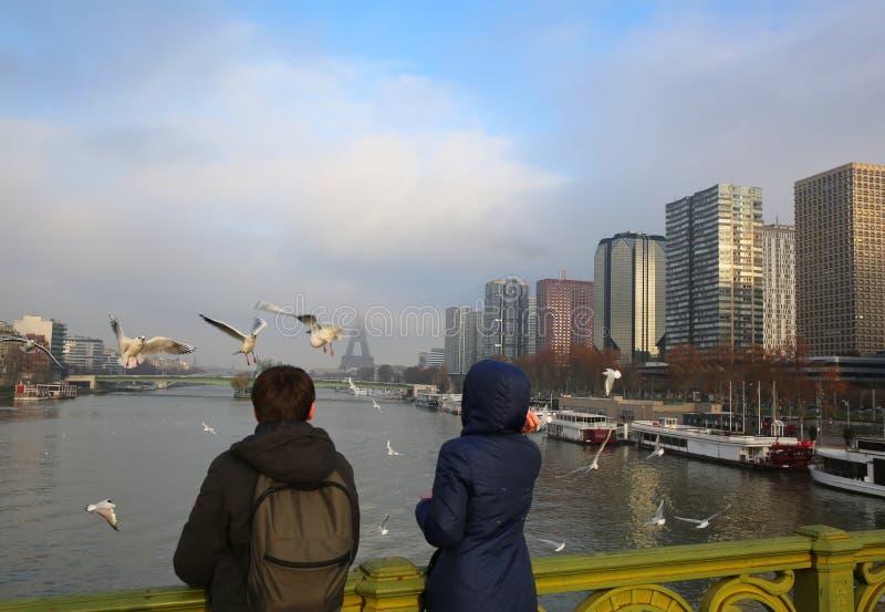 Ταΐζοντας seagulls στο Παρίσι στοκ φωτογραφίες με δικαίωμα ελεύθερης χρήσης