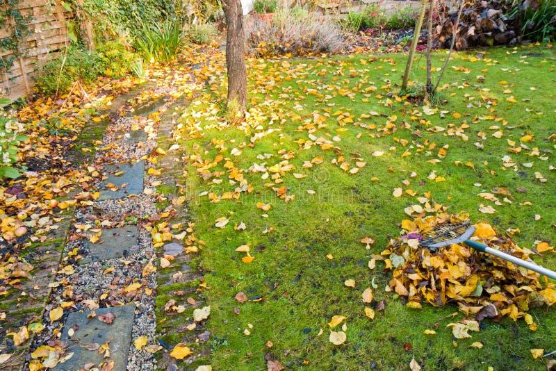 τακτοποίηση κήπων φθινοπώρ στοκ εικόνες