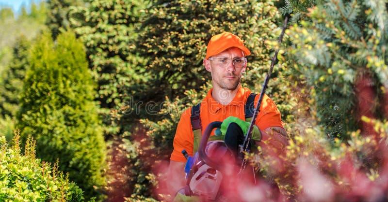 Τακτοποιώντας εγκαταστάσεις κηπουρών στοκ εικόνα με δικαίωμα ελεύθερης χρήσης
