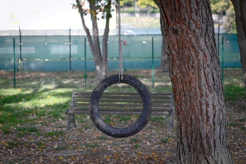 Ταλάντευση ροδών στο πάρκο στοκ εικόνες με δικαίωμα ελεύθερης χρήσης