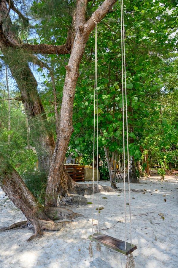 Ταλάντευση στους κορμούς δέντρων στην όμορφη άσπρη παραλία Ko Kut, Ταϊλάνδη Ταλάντευση στην όμορφη παραλία με την άσπρη άμμο και  στοκ φωτογραφίες