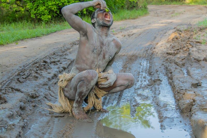 Τανζανία - τανζανική επιφύλαξη παιχνιδιού Selous κατοίκων του δάσους @ στοκ φωτογραφίες με δικαίωμα ελεύθερης χρήσης