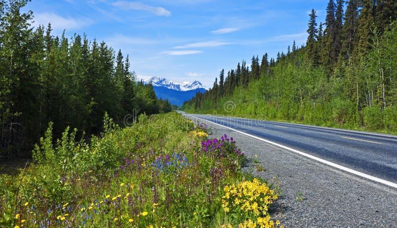 Ταξίδι Αλάσκα! στοκ εικόνα