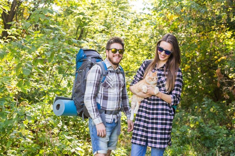 Ταξίδι, περιπέτειες, έννοια πεζοπορώ, τουρισμού και φύσης - ζεύγος τουριστών με τη γάτα που περπατά στα ξύλα στοκ φωτογραφία με δικαίωμα ελεύθερης χρήσης