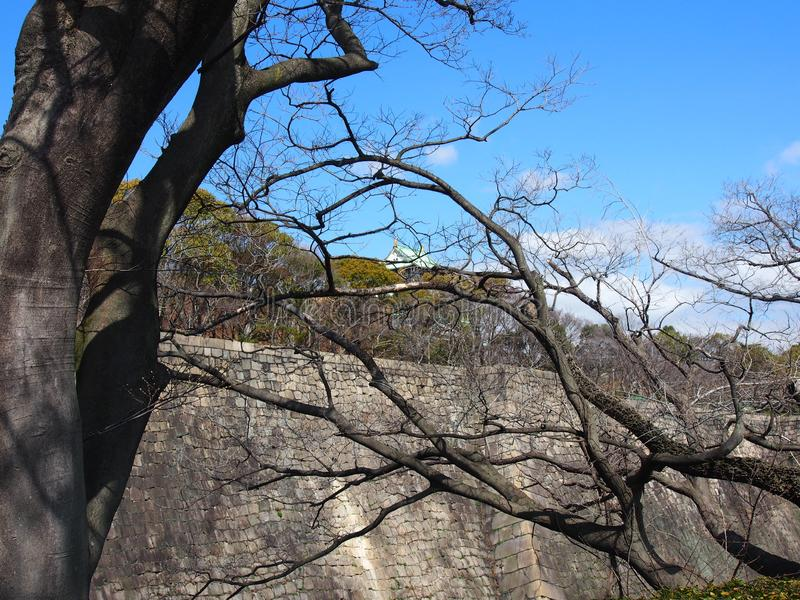 Ταξίδι της Οζάκα Ιαπωνία δέντρων του Castle ουρανού στοκ εικόνες