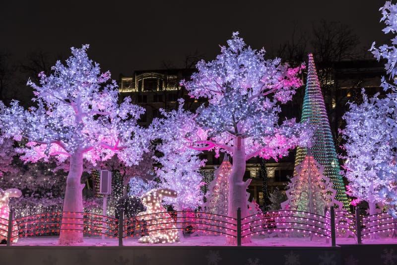 Ταξίδι στα Χριστούγεννα `, δάσος μουσικής, Μόσχα, πλατεία Pushkin στοκ εικόνα