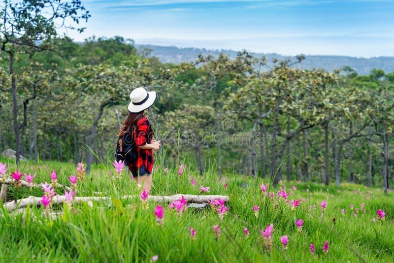 Ταξιδιώτης γυναικών με το σακίδιο πλάτης που απολαμβάνει στον τομέα λουλουδιών Krachiew, Ταϊλάνδη r στοκ φωτογραφία με δικαίωμα ελεύθερης χρήσης