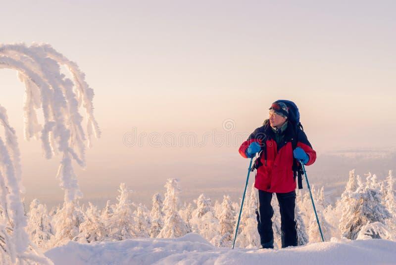 Ταξιδιώτης σε ένα χειμερινό τοπίο στοκ φωτογραφίες με δικαίωμα ελεύθερης χρήσης