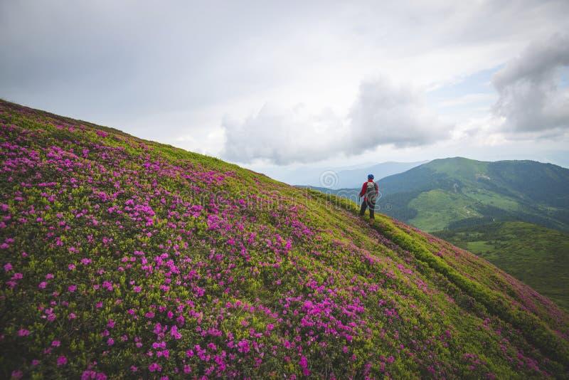 Ταξιδιώτης, στάσεις ατόμων στο ίχνος βουνών στοκ εικόνες με δικαίωμα ελεύθερης χρήσης