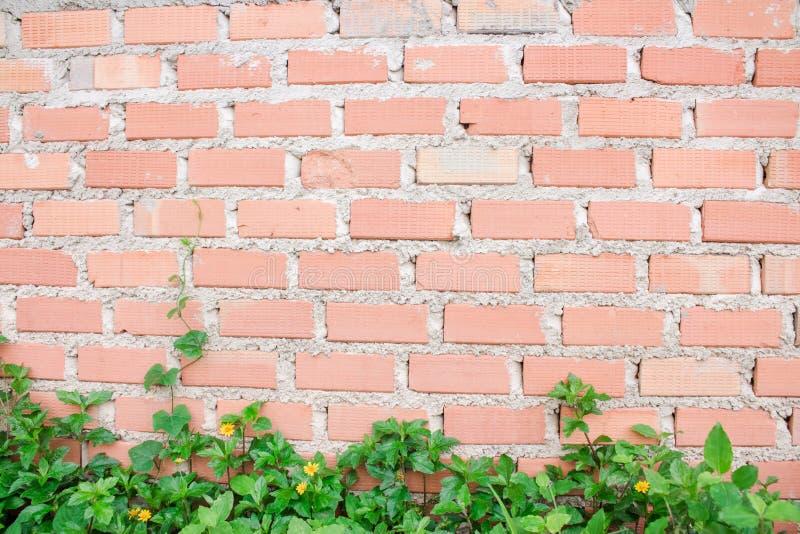 Ταπετσαρία τοίχων φραγμών στοκ φωτογραφίες