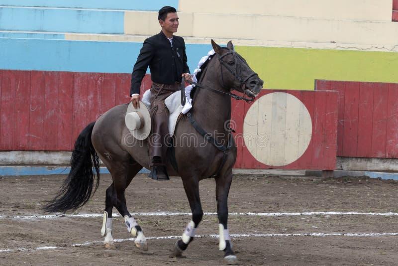 ταυρομάχος πλατών αλόγου στον Ισημερινό στοκ φωτογραφίες με δικαίωμα ελεύθερης χρήσης