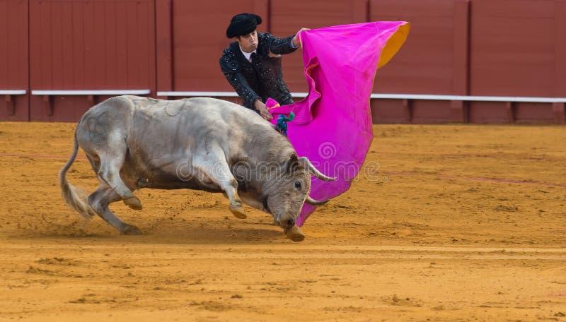 Ταυρομαχία Ισπανική ταυρομαχία στοκ φωτογραφία