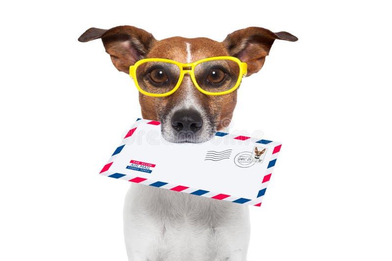 ταχυδρομείο σκυλιών στοκ φωτογραφίες
