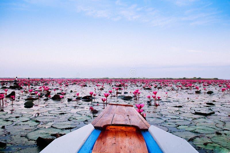 Ταϊλανδέζικο ξύλινο τόξο με βάρκα ταξιδεύει στην ειρηνική κόκκινη λίμνη Nong Harn - Udonthani, Ταϊλάνδη Διάσημη κόκκινη λίμνη λωτ στοκ εικόνες