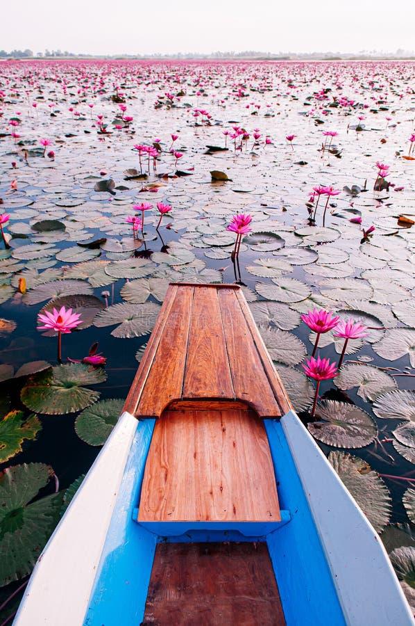Ταϊλανδέζικο ξύλινο τόξο με βάρκα ταξιδεύει στην ειρηνική κόκκινη λίμνη Nong Harn - Udonthani, Ταϊλάνδη Διάσημη κόκκινη λίμνη λωτ στοκ φωτογραφία με δικαίωμα ελεύθερης χρήσης