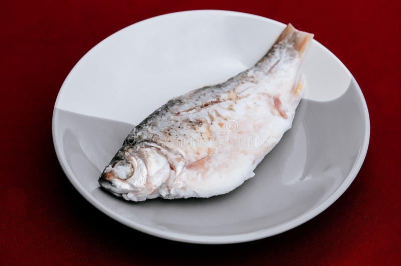 Ταϊλανδικά ζυμωνομμένα παστά ψάρια με το ρύζι ή το SOM Pla στοκ φωτογραφία με δικαίωμα ελεύθερης χρήσης