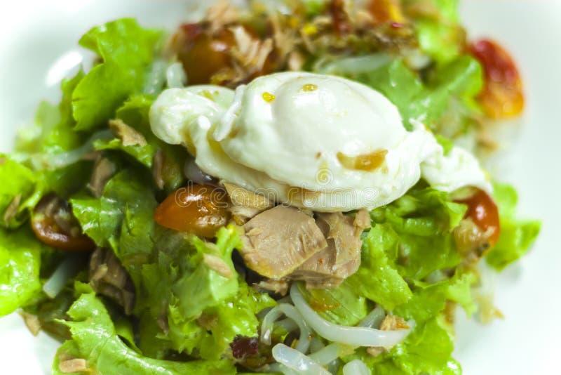 Ταϊλανδική σαλάτα τόνου με το αυγό, το πικάντικες κρεμμύδι σαλάτας τόνου και τις ντομάτες στο πιάτο στοκ εικόνες με δικαίωμα ελεύθερης χρήσης