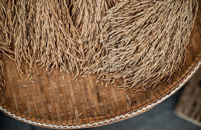 Ταϊλανδικός ορυζώνας ρυζιού wickerwork, εκλεκτής ποιότητας ύφος στοκ εικόνα