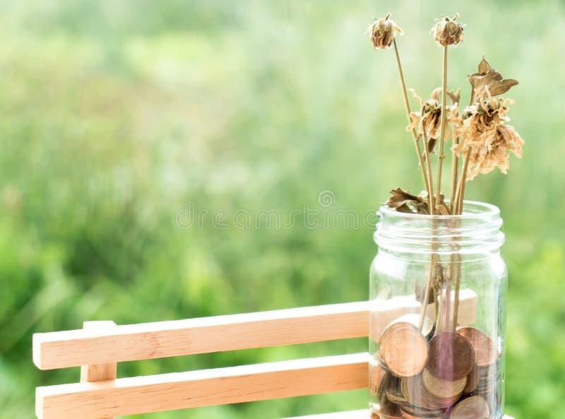 Ταϊλανδικό νόμισμα χρημάτων στο μπουκάλι με το λουλούδι στοκ εικόνες