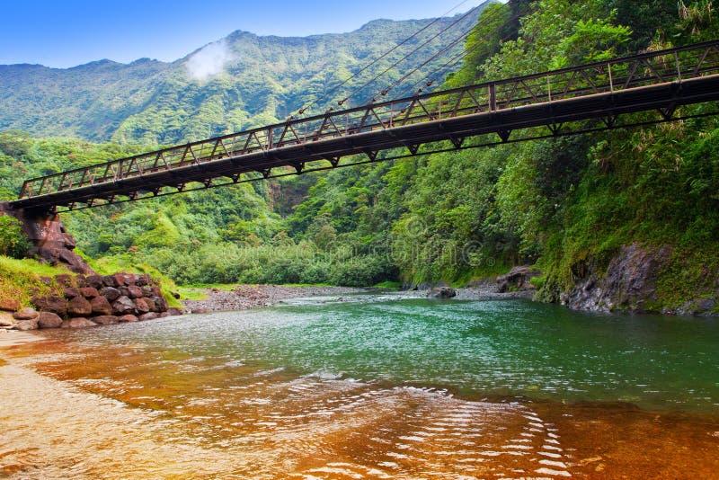 Ταϊτή. Η γέφυρα μέσω του ποταμού στα βουνά. στοκ εικόνες