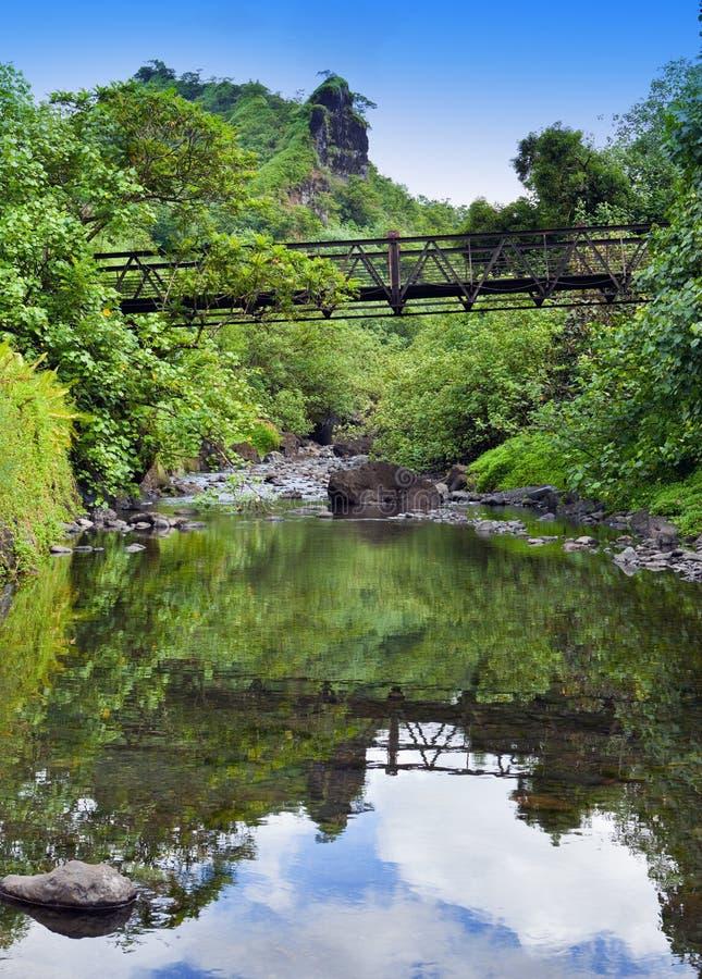 Ταϊτή Η γέφυρα μέσω του ποταμού στα βουνά στοκ φωτογραφία με δικαίωμα ελεύθερης χρήσης