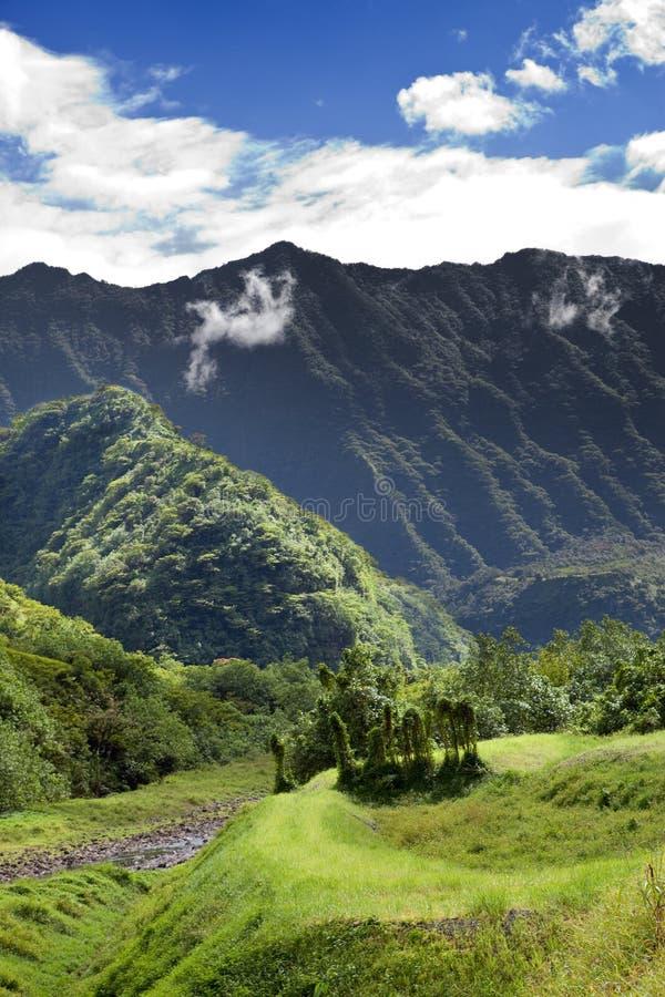 Ταϊτή Ο δρόμος στα βουνά φύση τροπική στοκ φωτογραφία
