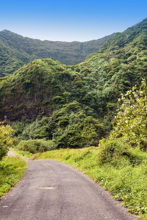 Ταϊτή Ο δρόμος στα βουνά φύση τροπική στοκ φωτογραφία με δικαίωμα ελεύθερης χρήσης