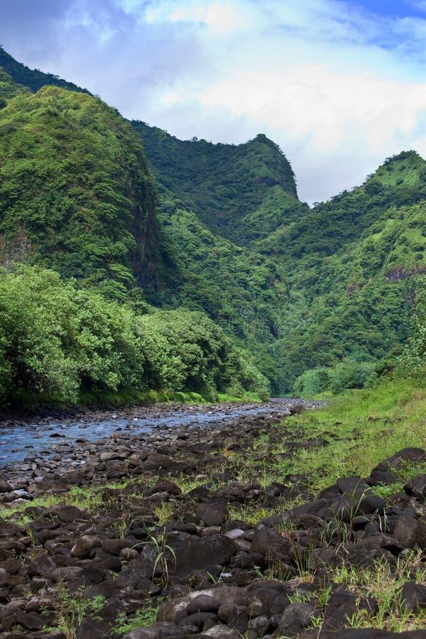 Ταϊτή Tropical ποταμός φύσης και βουνών στοκ φωτογραφίες