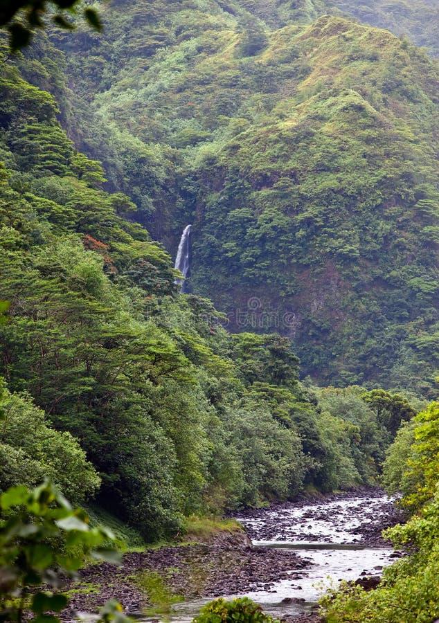 Ταϊτή Tropical ποταμός φύσης και βουνών στοκ φωτογραφίες με δικαίωμα ελεύθερης χρήσης