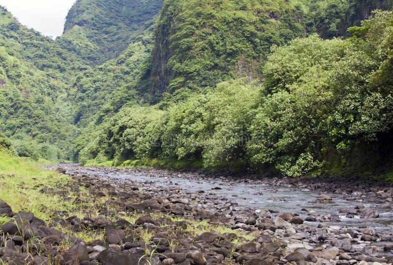 Ταϊτή Tropical ποταμός φύσης και βουνών στοκ εικόνα με δικαίωμα ελεύθερης χρήσης