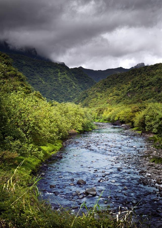 Ταϊτή Tropical ποταμός φύσης και βουνών στοκ φωτογραφία με δικαίωμα ελεύθερης χρήσης