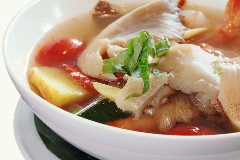 Ταϊλανδική σούπα διοσκορέων του Tom στοκ εικόνες με δικαίωμα ελεύθερης χρήσης