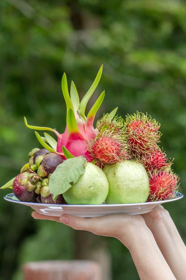 Ταϊλανδικός δίσκος φρούτων στοκ εικόνες