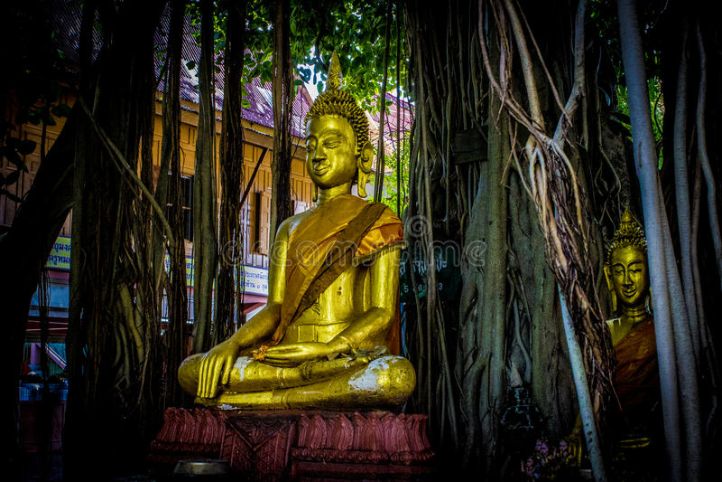 Ταϊλανδικό Buddhas 9 στοκ εικόνες