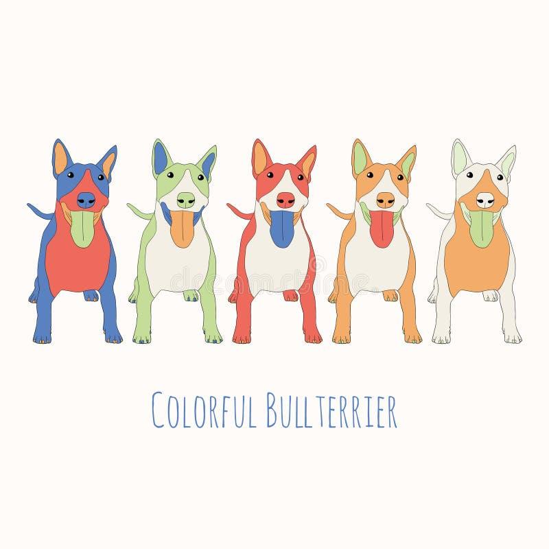 Ταύρος-τεριέ στο χρώμα ελεύθερη απεικόνιση δικαιώματος