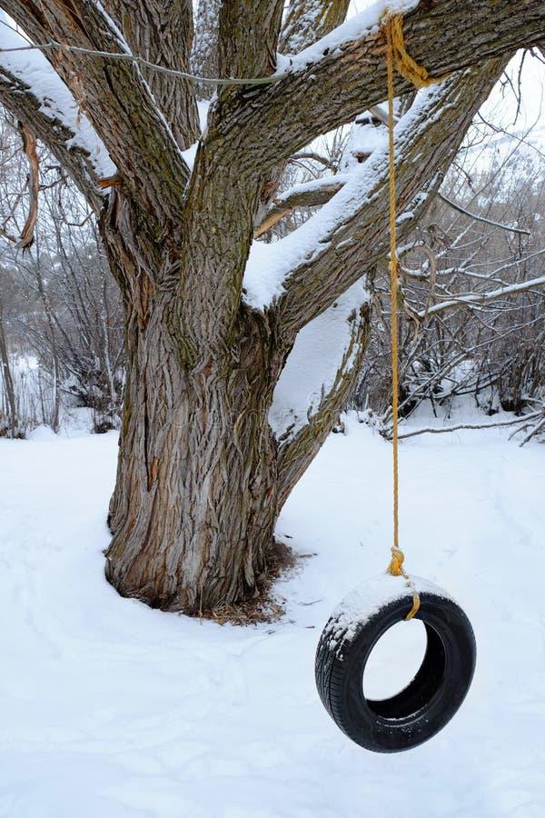 Ταλάντευση ροδών στο κρύο χειμερινού χιονιού στοκ φωτογραφία με δικαίωμα ελεύθερης χρήσης