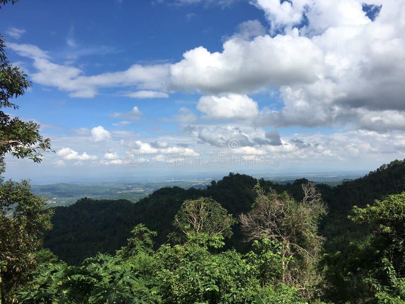 Τα δάση και ο ουρανός στοκ φωτογραφίες