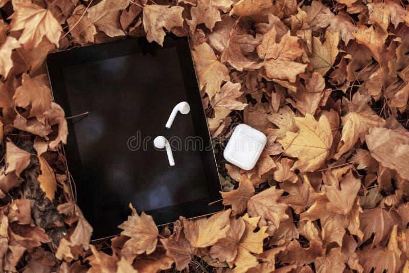 Τα άσπρα ακουστικά/τα ακουστικά και η μαύρη ταμπλέτα γεμίζουν σε ένα υπόβαθρο των κίτρινων φύλλων στοκ φωτογραφίες