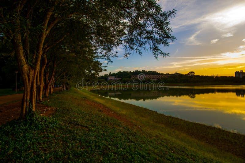 Τα δέντρα, ο ποταμός και το ηλιοβασίλεμα στοκ εικόνες με δικαίωμα ελεύθερης χρήσης