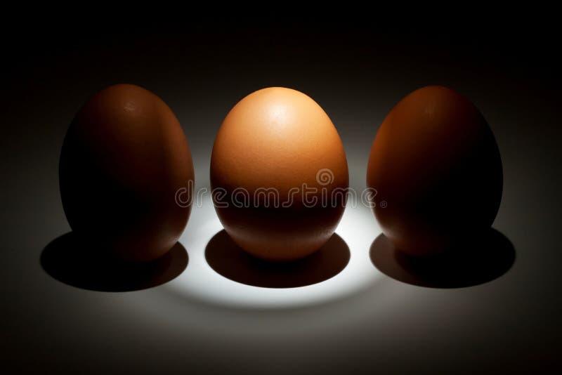 τα αυγά αυγών φώτισαν δύο στοκ εικόνα