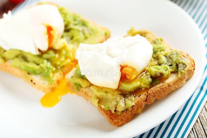 τα αυγά κυνήγησαν λαθραί&alph στοκ εικόνες