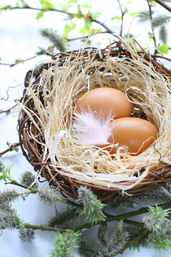 τα αυγά Πάσχας επενδύουν &m στοκ εικόνες