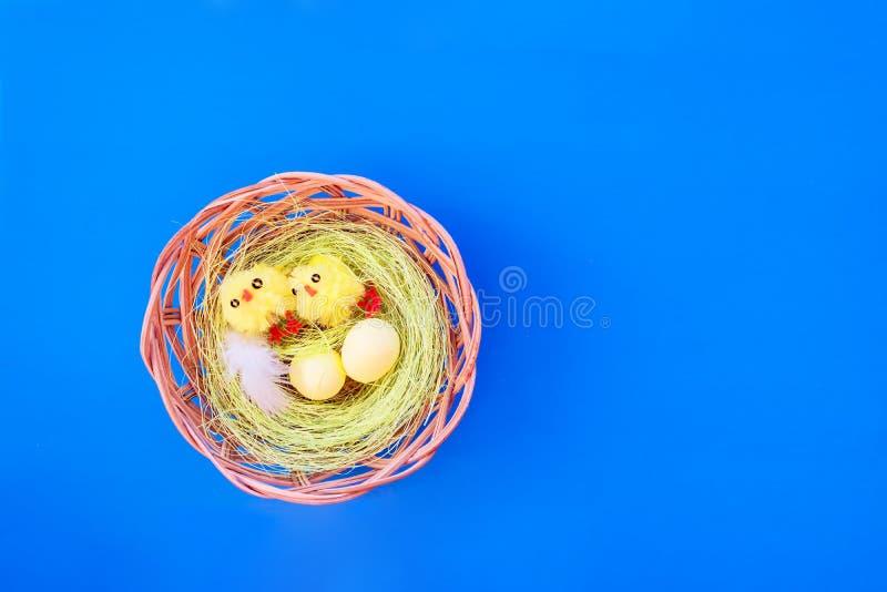 Τα αυγά Πάσχας και οι νεοσσοί παιχνιδιών στη φωλιά με τα φτερά κοτόπουλου σε ένα φωτεινό μπλε χαρτόνι, αφαιρούν το εορταστικό υπό στοκ εικόνες