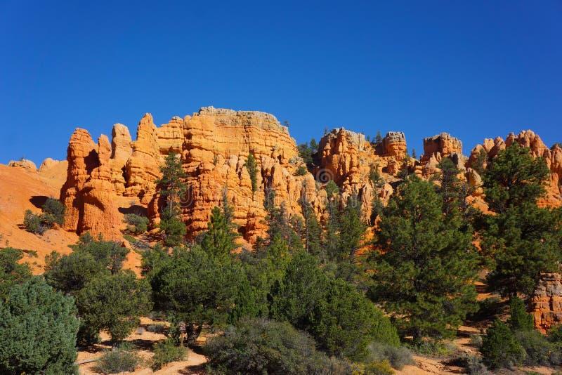 Τα βουνά φαραγγιών του Bryce με τρίβουν τα δέντρα στοκ εικόνες με δικαίωμα ελεύθερης χρήσης